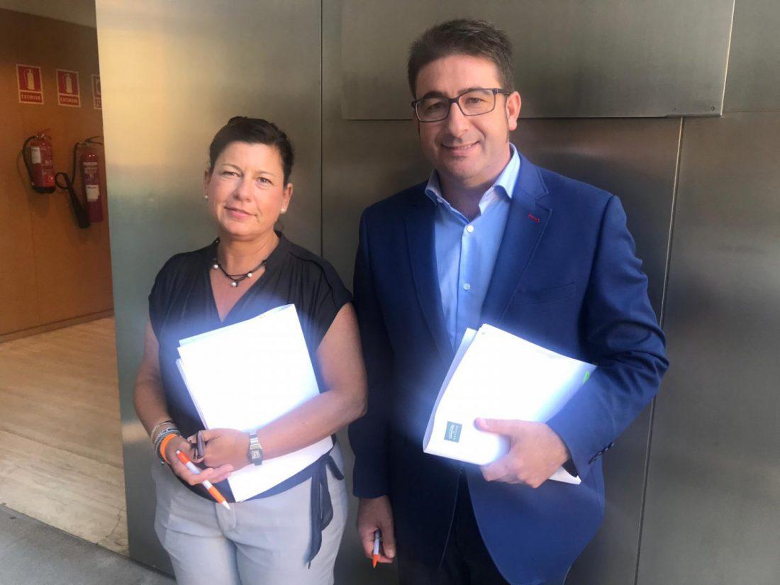 """AionSur Ciudadanos-Dipu Ciudadanos ejercerá una labor """"fiscalizadora"""" en la Diputación Diputación Política"""