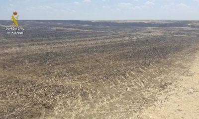 AionSur Incendio-el-viso-400x240 Detenido un vecino de El Viso del Alcor acusado de provocar varios incendios Campiña de Carmona Incendios Sucesos
