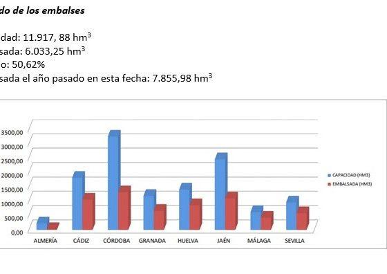 AionSur sequía-coag-560x396 Cereales y sectores ganaderos, los más afectados por la sequía, según COAG Andalucía Agricultura Andalucía  destacado