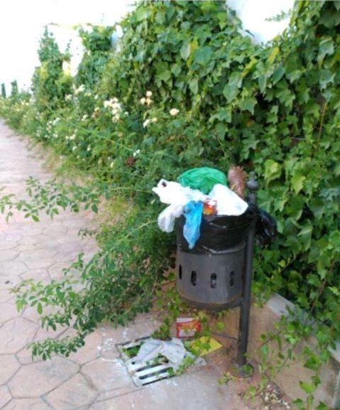 AionSur 68407580_494507234711334_76614614468526080_n-compressor Trapicheos de droga, suciedad, ratas y heces de perros preocupan a los vecinos de la barriada de las flores en Arahal Arahal  destacado