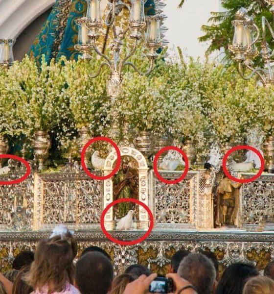 AionSur Virgen-Palomas-560x600 Pacma denuncia el uso de palomas atadas al paso de la Virgen del Águila en Alcalá de Guadaíra Alcalá de Guadaíra Sociedad  destacado