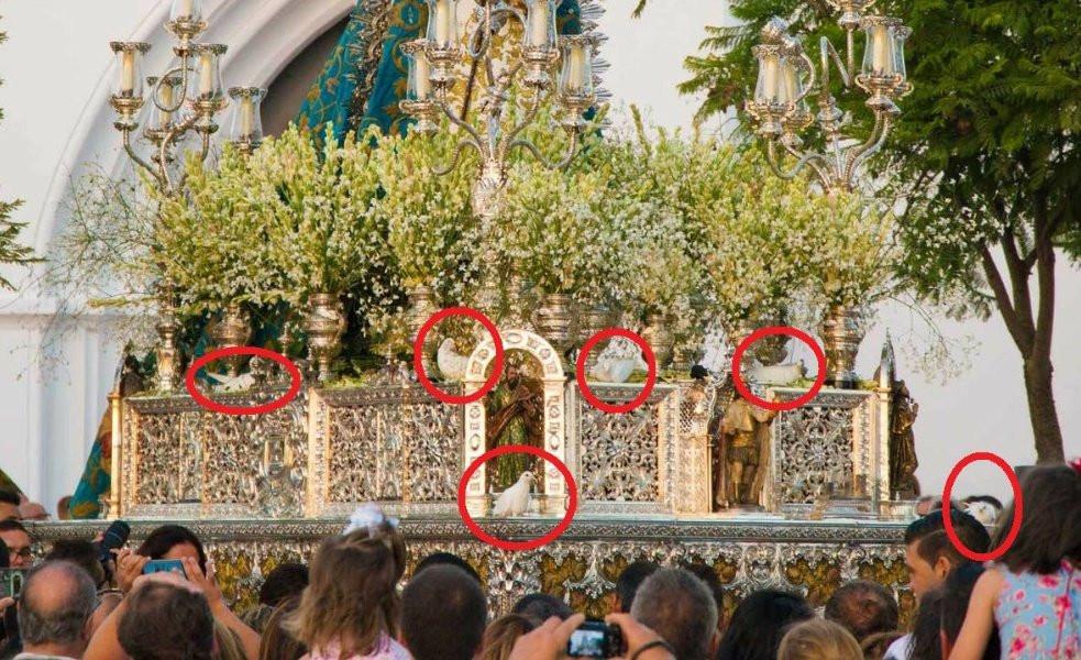 AionSur: Noticias de Sevilla, sus Comarcas y Andalucía Virgen-Palomas Pacma denuncia el uso de palomas atadas al paso de la Virgen del Águila en Alcalá de Guadaíra Alcalá de Guadaíra Sociedad destacado