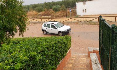 AionSur WhatsApp-Image-2019-08-26-at-20.07.10-400x240 Estepa, Gilena, Herrera, Lora de Estepa y Pedrera, declarados zona catastrófica por lluvias Andalucía Provincia Sociedad