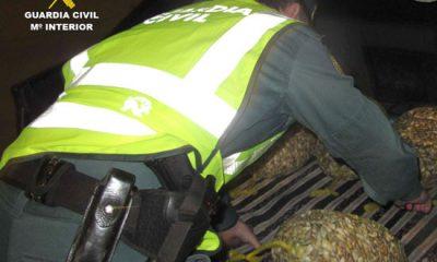 AionSur coquinas-guardia-civil-1-400x240 Cae una red que traficaba con coquinas contaminadas en ocho pueblos de Sevilla Provincia Sucesos