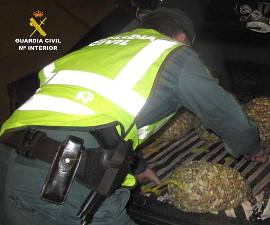 AionSur coquinas-guardia-civil-1 Cae una red que traficaba con coquinas contaminadas en ocho pueblos de Sevilla Provincia Sucesos