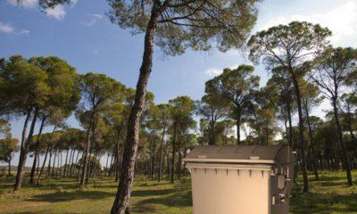 AionSur: Noticias de Sevilla, sus Comarcas y Andalucía PROHIBICIÓN-BASURA-EN-LA-ROMERIA-2019-compressor-400x240 Mairena pide a sus vecinos que, en la romería 2019, no dejen huella Mairena del Alcor Medio Ambiente