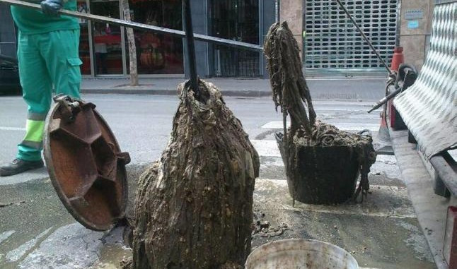 AionSur toallitas Alcalá de Guadaíra declara la guerra al mal uso de las toallitas Alcalá de Guadaíra Sociedad