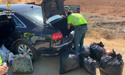 AionSur COGOLLOS-MARIHUANA-SE30-400x240 Interceptado en Sevilla un vehículo con 24 bolsas de marihuana Narcotráfico Sucesos