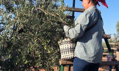 "AionSur IMG_7189-compressor-400x240 Las ""millennials"" quieren ser agricultoras Agricultura Andalucía"