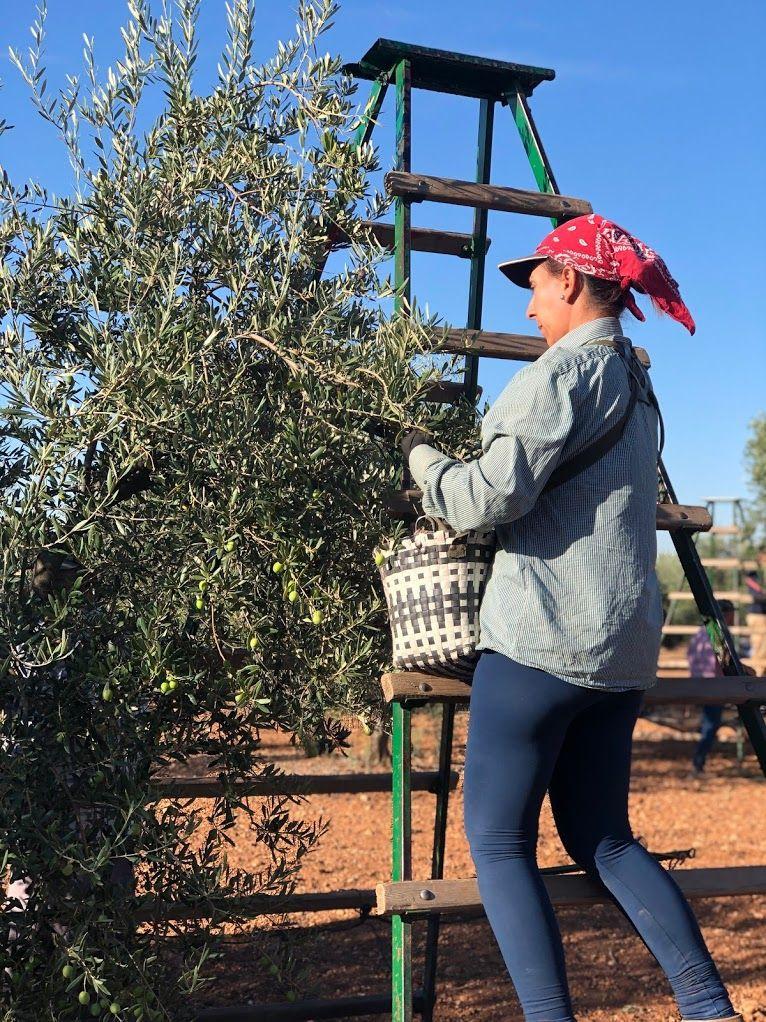 "AionSur IMG_7189-compressor Las ""millennials"" quieren ser agricultoras Agricultura Andalucía"