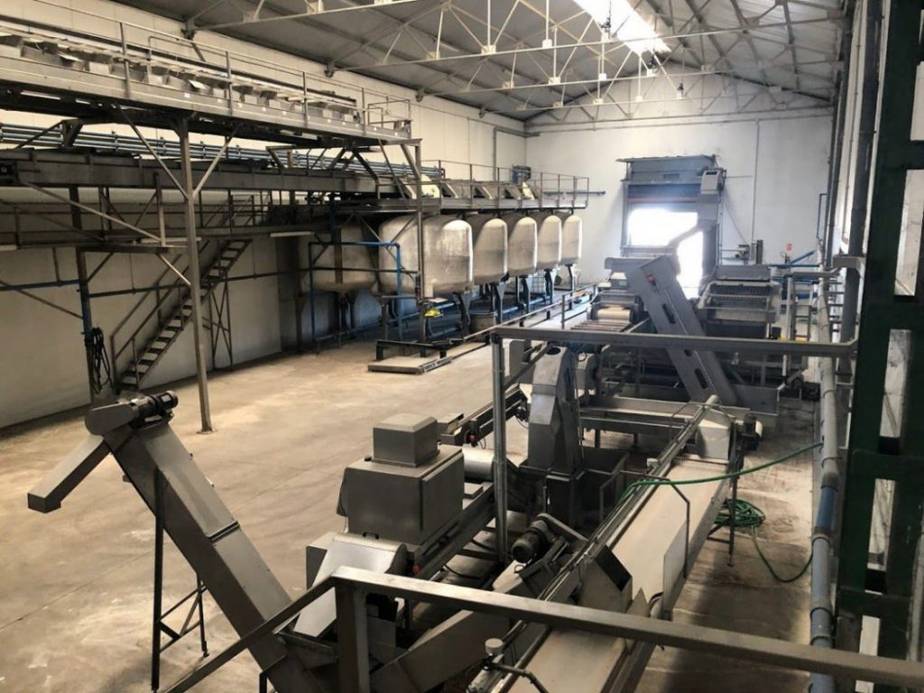 AionSur IMG_8071-compressor-1024x768 La Cooperativa San Isidro Labrador de Marchena trabaja para implantar un pionero plan de igualdad Empresas Marchena  destacado
