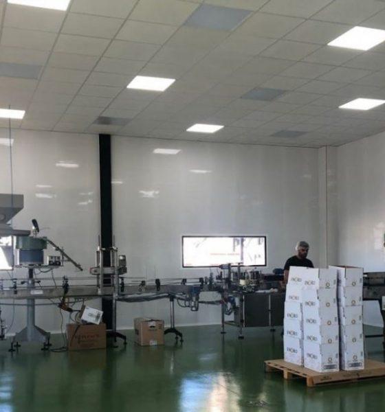 AionSur IMG_8676-compressor-560x600 Enoro y Ginoro estarán en la mayor feria de alimentación de China Arahal Empresas  destacado