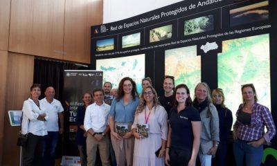 AionSur Turismo-ecuestre-400x240 Periodistas especializados en información ecuestre conocen la oferta de Sevilla Provincia Sociedad