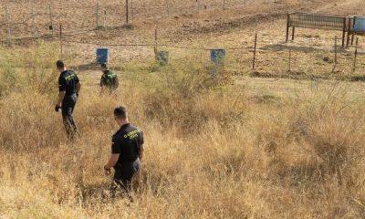 AionSur carmona-400x240 El cadáver hallado en Carmona el 8 de octubre es el de Mercedes, la vecina desaparecida Carmona Sucesos