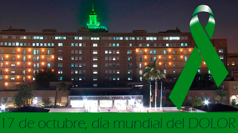 AionSur hospital-cupula La cúpula del Virgen del Rocío se iluminará de verde por el Día Mundial contra el Dolor Salud Sevilla