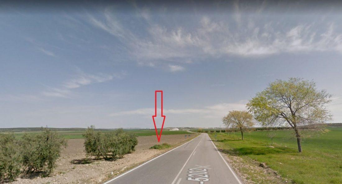 AionSur: Noticias de Sevilla, sus Comarcas y Andalucía perro-compressor Encuentran un galgo abatido por perdigones a la salida de Arahal Animales Arahal Paradas Sucesos destacado
