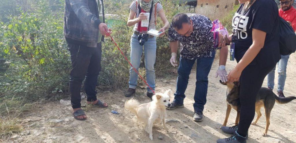 AionSur 1c299f61-d645-4d12-b4da-69034b405977-compressor-1024x497 De Morón a Nepal, un viaje para vacunar contra la rabia a cientos de perros Morón de la Frontera Sociedad  destacado