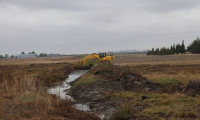 """AionSur 75341054_2552506891538657_4122156821534212096_o-compressor-400x240 """"Limpiar los cauces no soluciona el problema de las inundaciones"""", según Ecologistas en Acción """"Jaedilla"""" Arahal Medio Ambiente  destacado"""