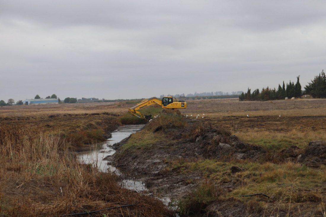 """AionSur 75341054_2552506891538657_4122156821534212096_o-compressor """"Limpiar los cauces no soluciona el problema de las inundaciones"""", según Ecologistas en Acción """"Jaedilla"""" Arahal Medio Ambiente destacado"""