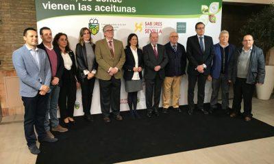 AionSur IGP-Aceitunas-3-400x240 Las IGP de las aceitunas Manzanilla y Gordal se presentan oficialmente Agricultura Economía destacado