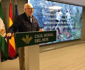 AionSur IGP-Aceitunas-4-300x248 Las IGP de las aceitunas Manzanilla y Gordal se presentan oficialmente Agricultura Economía  destacado