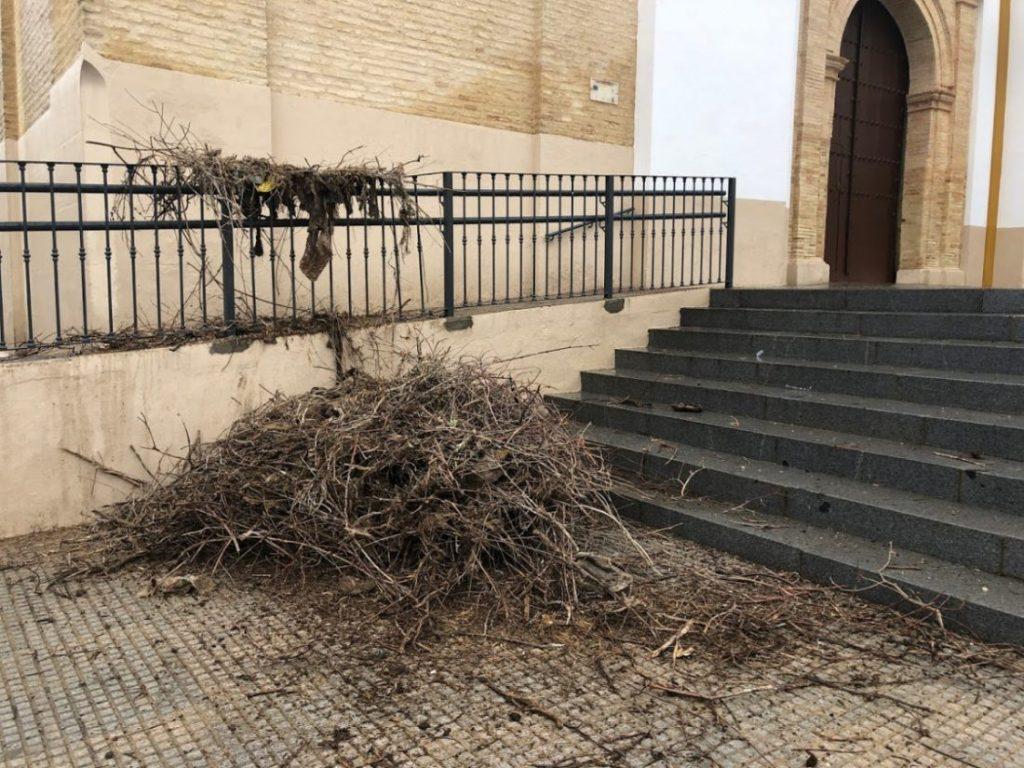 AionSur IMG_1438-1024x768 El viento tira el nido de la iglesia de la Victoria de Arahal instantes antes de pasar un vecino Sucesos  destacado