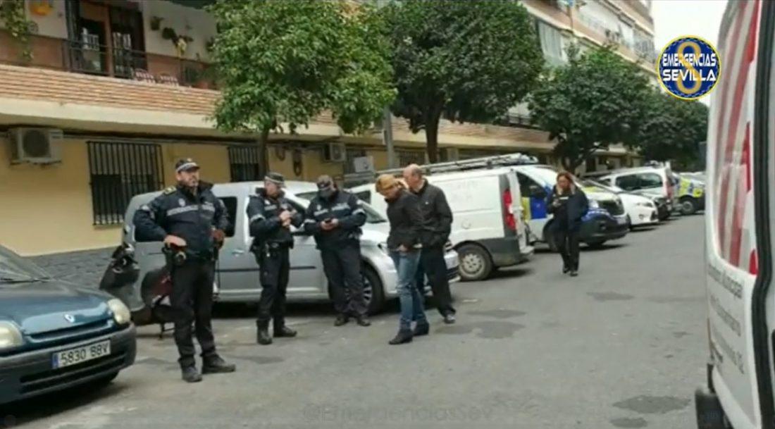 AionSur policia Intervenida una treintena de animales que permanecían hacinados en una vivienda del Parque Alcosa Sevilla Sociedad destacado