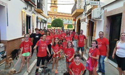 AionSur 66019202_2468722423192397_3656912988935290880_o-compressor-400x240 Una pizzería de Arahal organiza evento solidario a favor del refugio El Amparo del Sur Arahal Voluntariado