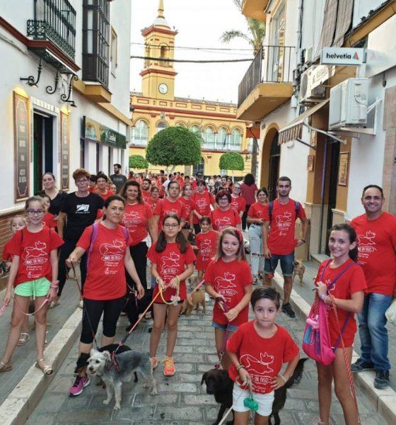 AionSur 66019202_2468722423192397_3656912988935290880_o-compressor-560x600 Una pizzería de Arahal organiza evento solidario a favor del refugio El Amparo del Sur Arahal Voluntariado
