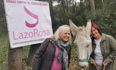 AionSur Burritos-Hinojos-1-400x240 Una terapia con burritos ayuda a mujeres con cáncer de mama Huelva Salud Sevilla