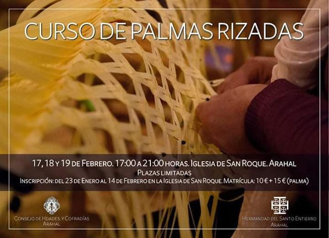 AionSur: Noticias de Sevilla, sus Comarcas y Andalucía 82992382_194521688337479_4988289645956562944_n-compressor Nuevo curso de palmas rizadas organizado por el Santo Entierro de Arahal Agenda Arahal