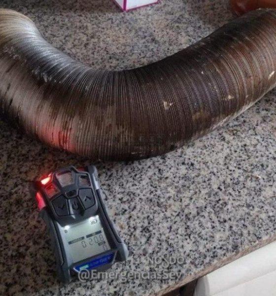 AionSur 83591488_1600801030051588_7768466691561881600_o-compressor-560x600 Tres intoxicados por la obstrucción de un tubo por nidos de pájaros Sevilla Sucesos  destacado