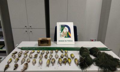 AionSur CORIA-compressor-400x240 Incautadas en Coria del Río 53 aves cazadas de forma ilegal Sucesos  destacado caza