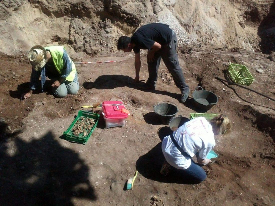 AionSur IMG2885-compressor La fosa de La Puebla de Cazalla saca a la luz 77 cuerpos, pero solo dos son identificados Asociaciones La Puebla de Cazalla Sociedad destacado