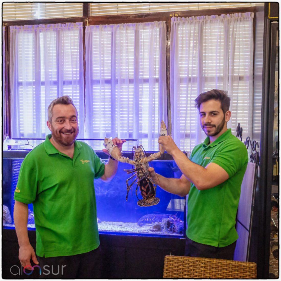 AionSur hispalista-venta-gourmet-compressor Venta Hispalis: sobre cómo comer gourmet en una venta de carreteras Empresas destacado