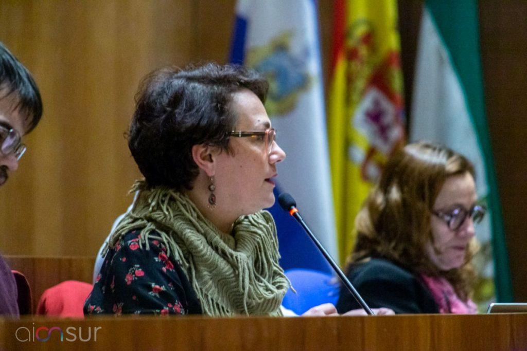 AionSur 93251a06-9a4b-4d16-ab07-df84f89ec2df-compressor-1024x683 Intenso debate en la subida de las tres tasas de servicios municipales planteadas en Arahal Arahal Política  destacado