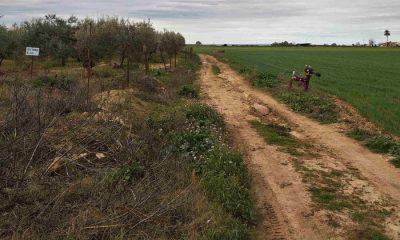 AionSur camino-rural-CARMONA-400x240 Carmona pide ayuda a la Junta para arreglar sus caminos rurales Carmona