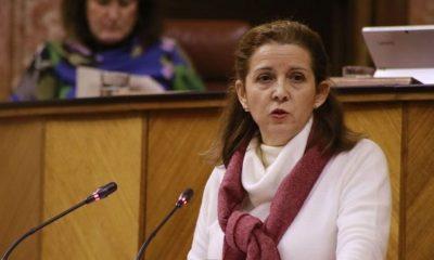 AionSur vox-presidenta-400x240 Dimite la presidenta de Vox en Sevilla, que denuncia irregularidades económicas en el partido Política Provincia