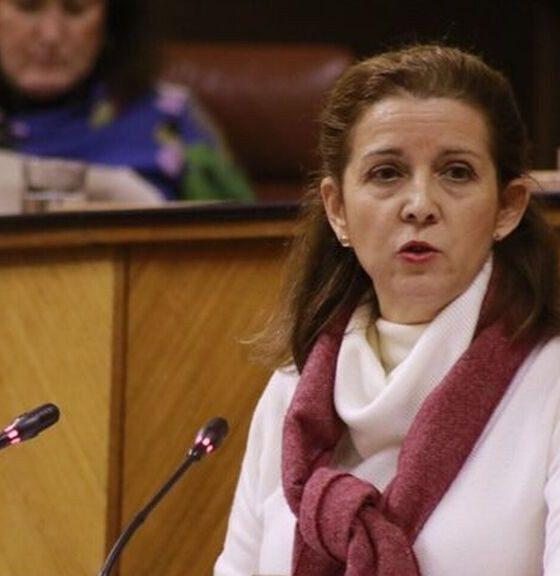 AionSur vox-presidenta-560x576 Dimite la presidenta de Vox en Sevilla, que denuncia irregularidades económicas en el partido Política Provincia