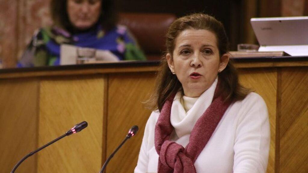 AionSur vox-presidenta Dimite la presidenta de Vox en Sevilla, que denuncia irregularidades económicas en el partido Política Provincia
