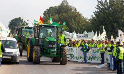 AionSur 1acc76c7-b4a7-4c4c-8a07-efc75ee385ed-compressor-400x240 Aplazada la movilización de los agricultores en el Puerto de Algeciras por el coronavirus Agricultura Sociedad