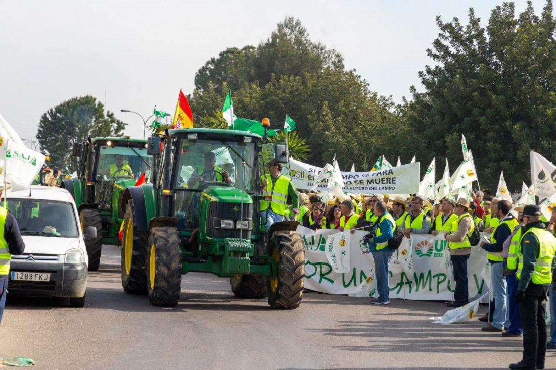 AionSur: Noticias de Sevilla, sus Comarcas y Andalucía 1acc76c7-b4a7-4c4c-8a07-efc75ee385ed-compressor Aplazada la movilización de los agricultores en el Puerto de Algeciras por el coronavirus Agricultura Sociedad