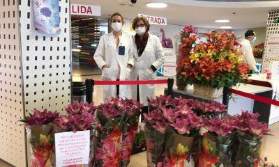 AionSur Flores-hospital-3-400x240 Flores de un vivero sevillano para dar las gracias a los sanitarios Coronavirus Salud Sevilla