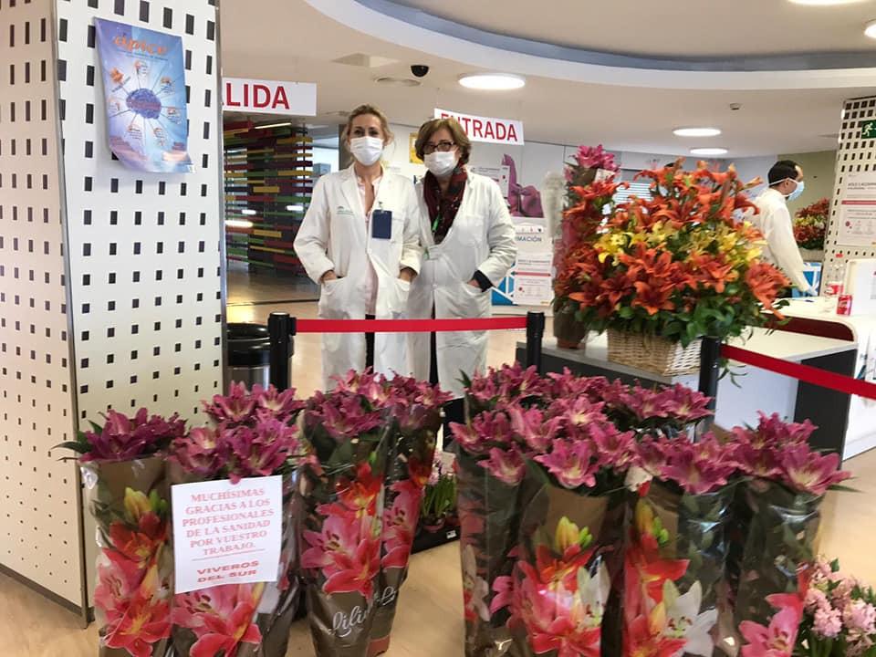 AionSur Flores-hospital-3 Flores de un vivero sevillano para dar las gracias a los sanitarios Coronavirus Salud Sevilla