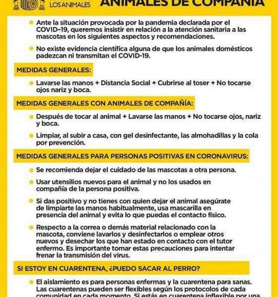 AionSur anmales-de-compañía-560x600 Abandono de animales: un delito que puede multiplicarse después del confinamiento Animales Coronavirus