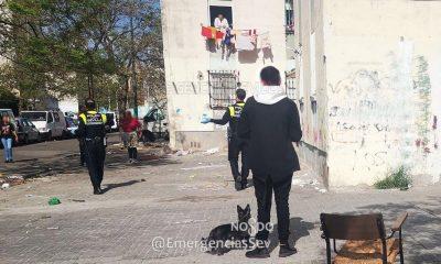 AionSur perro-Sevilla-400x240 Denunciado tras llevarse toda la mañana con el perro en una plaza de su barrio Coronavirus Salud Sevilla
