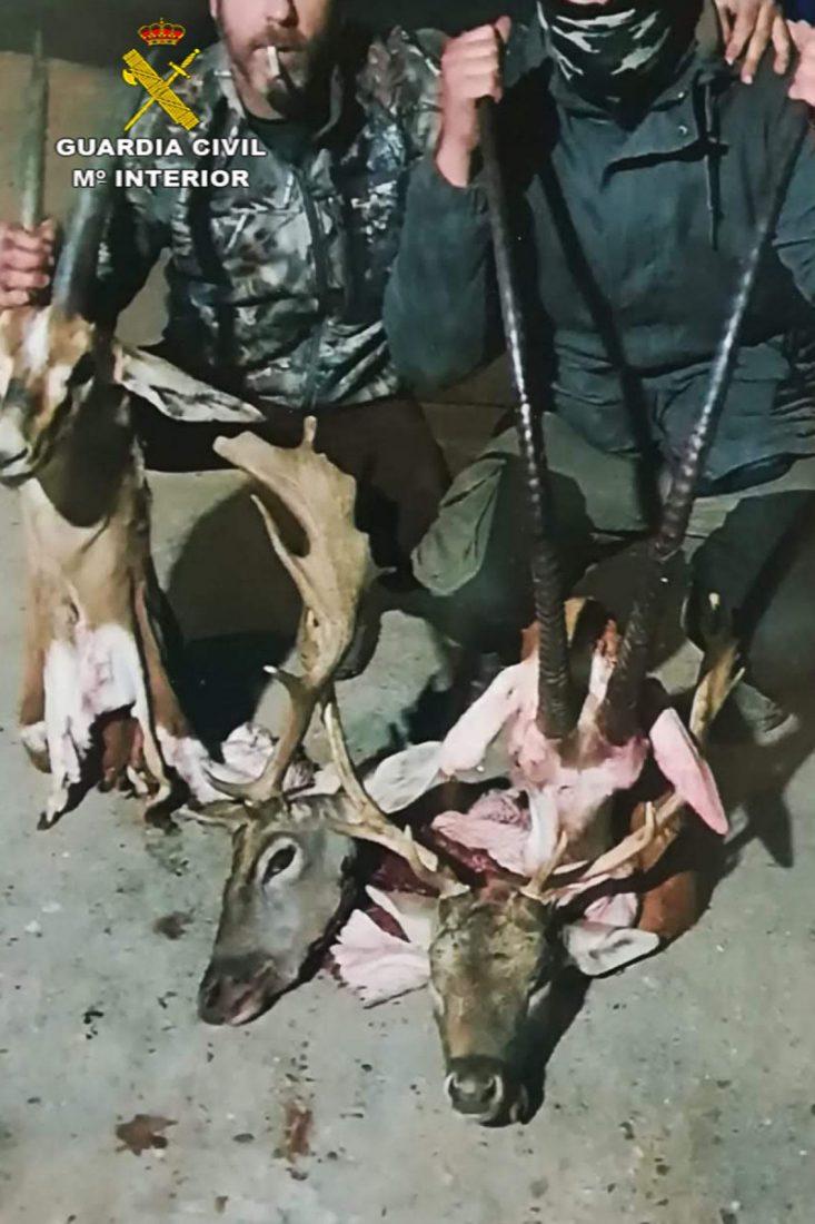 AionSur FOTO-compressor Investigados tres cazadores de especies protegidas en la reserva de El Castillo de las Guardas Animales Medio Ambiente Naturaleza