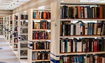 AionSur biblioteca-400x240 Activan un servicio en Mairena del Alcor para llevar a las casas los libros de sus bibliotecas Coronavirus Cultura Mairena del Alcor