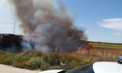 AionSur 6d17dc61-5b41-4cc3-97e3-55e1241a7ff5-400x240 Registrado un incendio en un campo de trigo junto a la Vereda de Sevilla en Arahal Arahal Sucesos