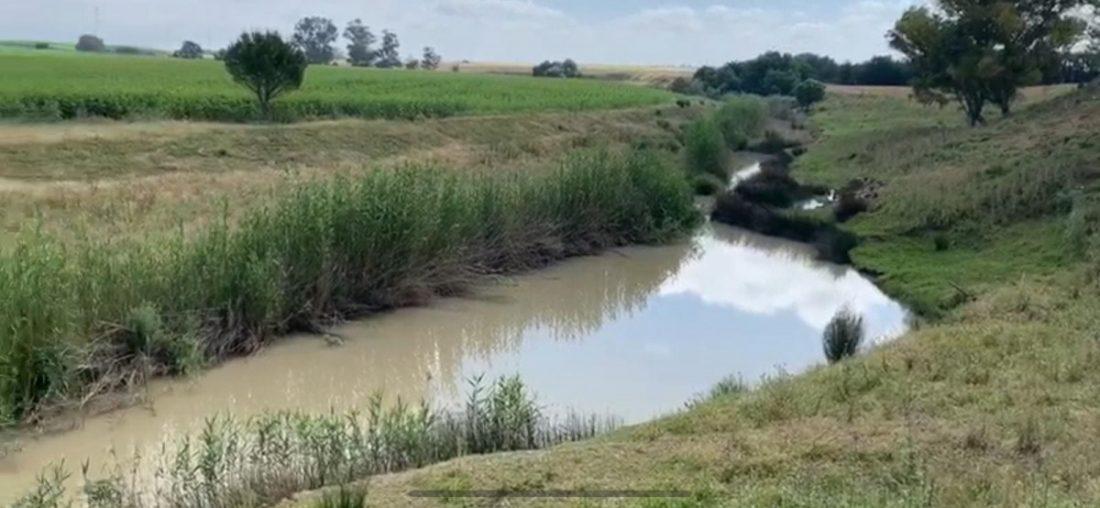 AionSur IMG-20200518-WA0008 Investigan un posible vertido al río Guadaíra a su paso por Alcalá Alcalá de Guadaíra Medio Ambiente